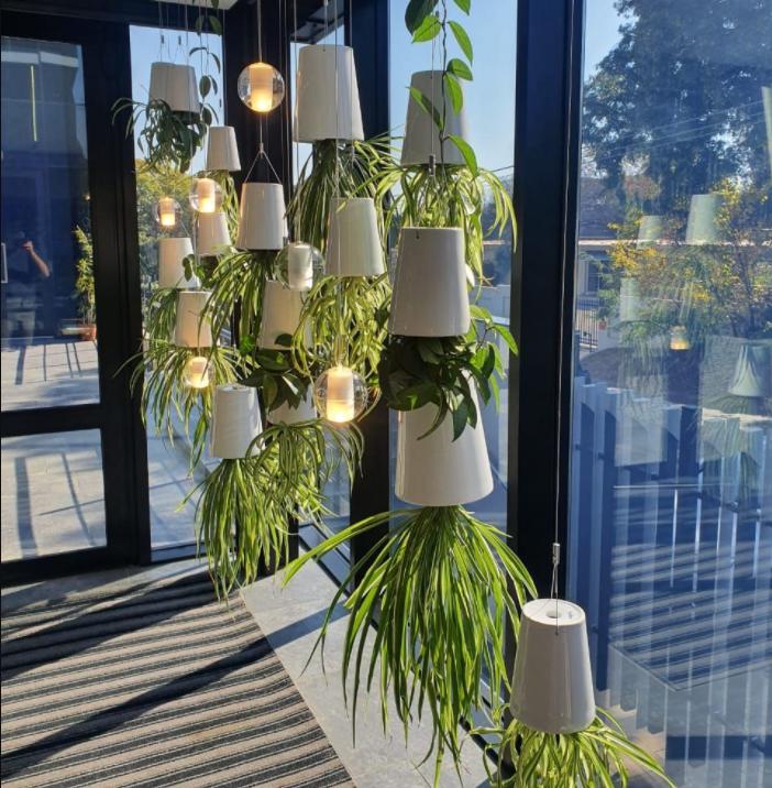 Sky planters - Plant Accessories - Vertical Gardens