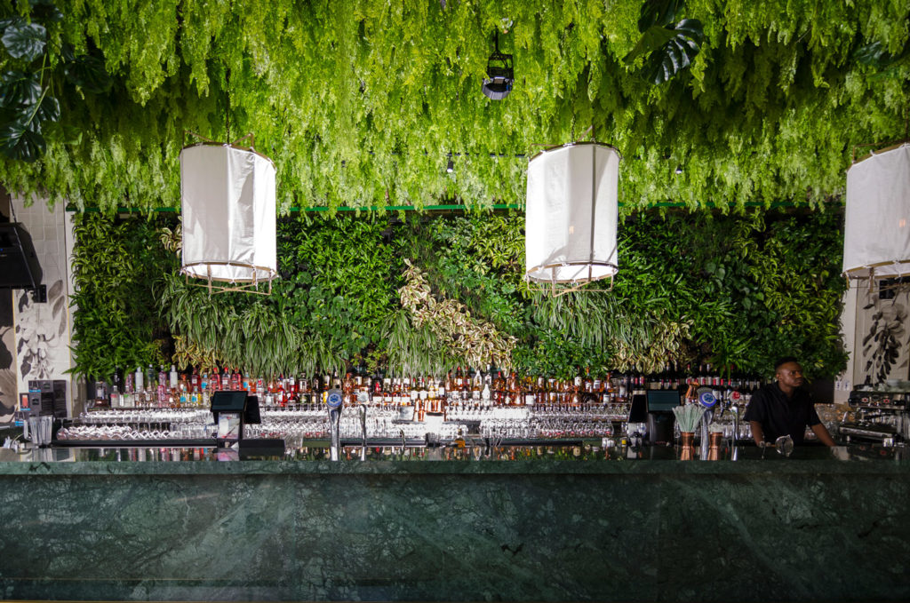Plant walls used in restaurants