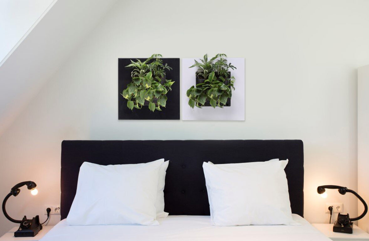 Living Picture - Plant Accessories - Bedroom - Living Green Walls