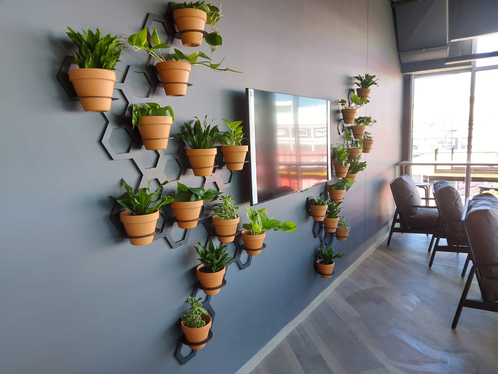 Honeycomb wall planters - plant accessories - provided by Living Green Walls